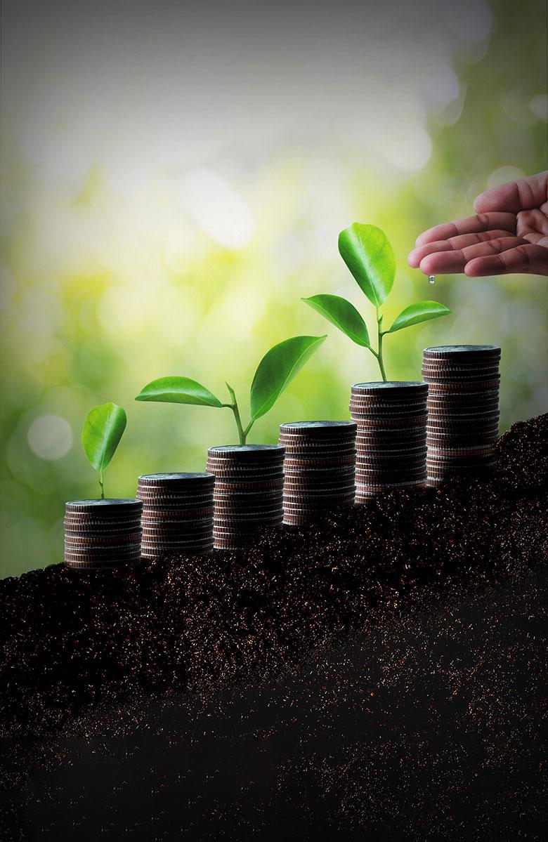 Малые и средние предприятия, предприниматели и стартапы